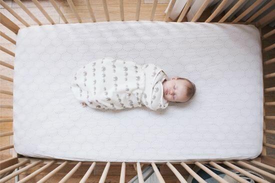 baby in Ergobaby swaddler
